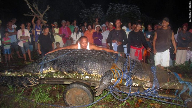 21-foot monster crocodile caught