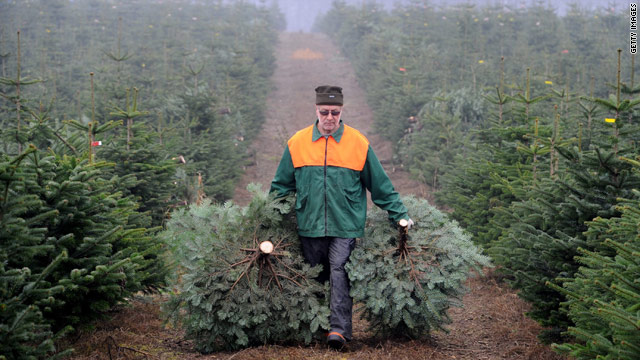 What tree growers want for Christmas: a 'tax'