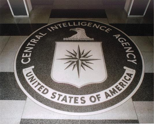 Some GOP candidates support waterboarding but CIA reluctant