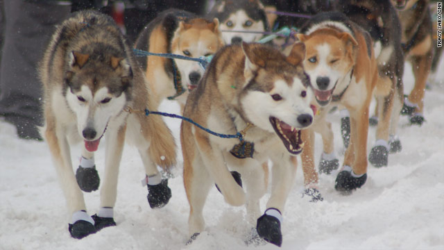 Iditarod route altered due to weather concerns