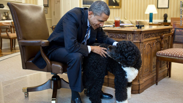 Going to the dogs: When do presidents trot out the first pooch?