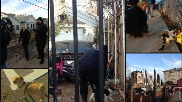Tonight on AC360: Saving pets lost after Sandy