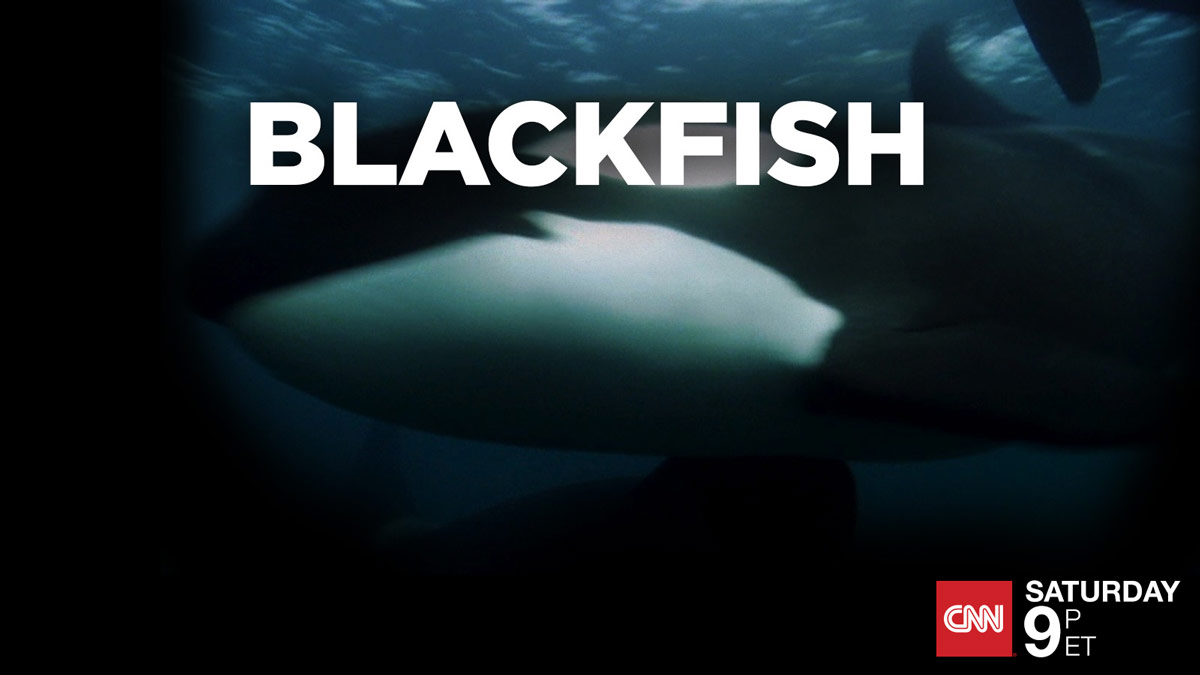 CNN Films encores #Blackfish Saturday, Aug. 15 at 9pmET