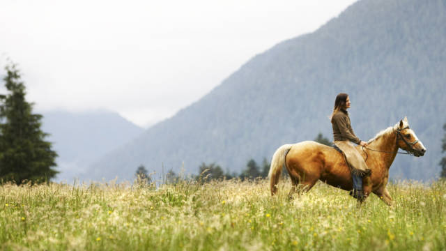 Riding a horse can present a metaphor for life.