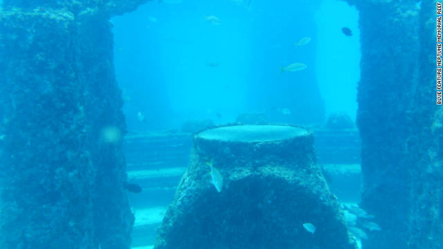 The Neptune Memorial Reef in Miami, Florida, is an artificial reef which doubles as a cemetery.