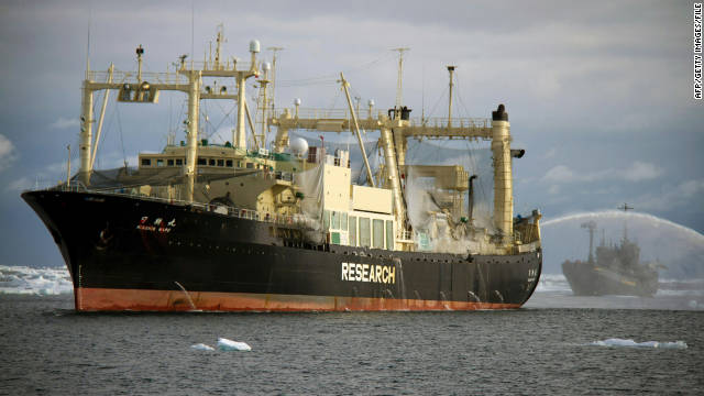 Japan vows to resume whale hunt; activists promise fight