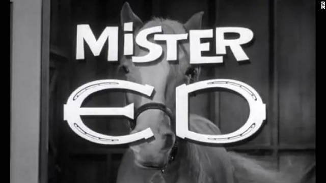 'Mr. Ed' to get movie treatment