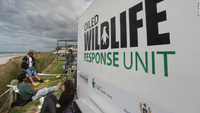Volunteers wait for a debriefing next to an Oiled Wildlife Response Unit at Omanu Beach on October 8 in Tauranga.
