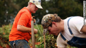 Brothers and new farmhands Jessie Lessley, left, and Jeb Lessley work on Ellen Jenkins\' tomato farm.