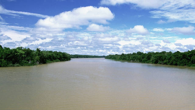 The Amazon River is surrounded by exotic, dense rain forests, indigenous tribes and abundant wildlife.