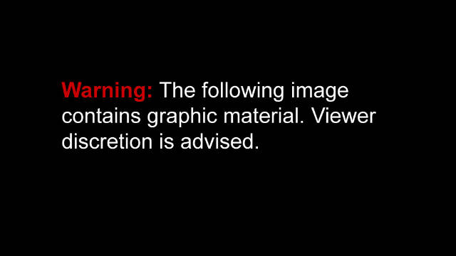 111020010008-warning-graphic-image-single-horizontal-gallery.jpg