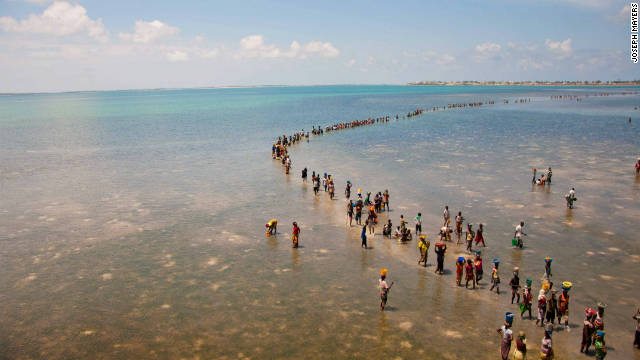People walk across the water to the island of Mozambique once the tide is out. Along the route locals collect different types of seafood to sell at market.