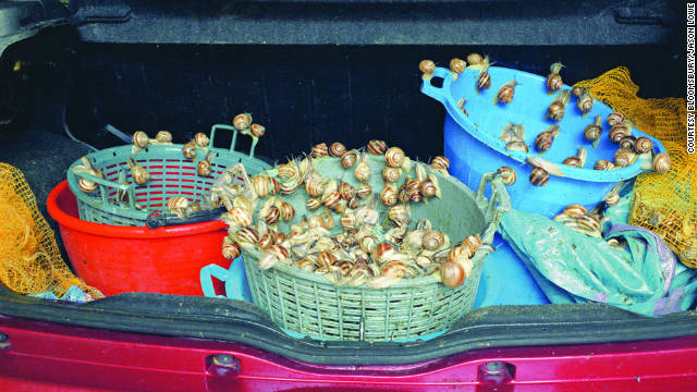 In June, wild snails are gathered to be served during the feast of San Onofrio.