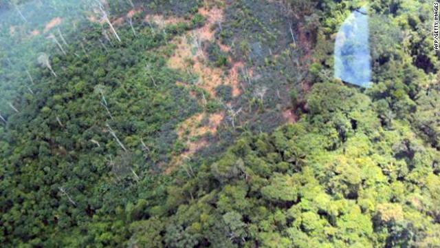 El Amazonas brasileño registra en 2011 el nivel más bajo en deforestación