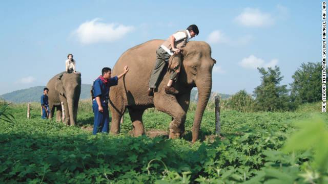 "Una ambulancia ""Jumbo"" para salvar elefantes en Tailandia"