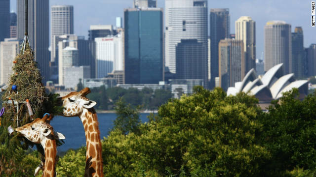 The wildlife at Taronga Zoo enjoy some of the best views in Sydney.