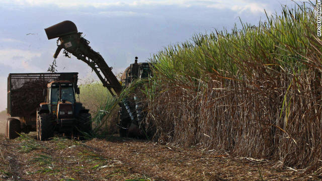 Alcantara says most of Braskem's sugarcane is grown in the state of Sao Paulo, which is a long way from the protected Amazon rainforest.