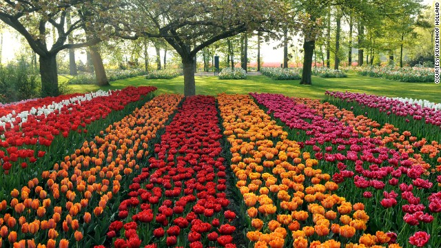 The colorful gardens at Keukenhof Castle remain one of the most popular tourist attractions in the Western European country.