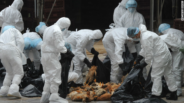Mutant bird flu would be airborne, scientists say