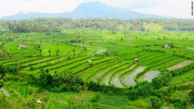 Indonesian Farmers Crisis As Usual Cnn Com