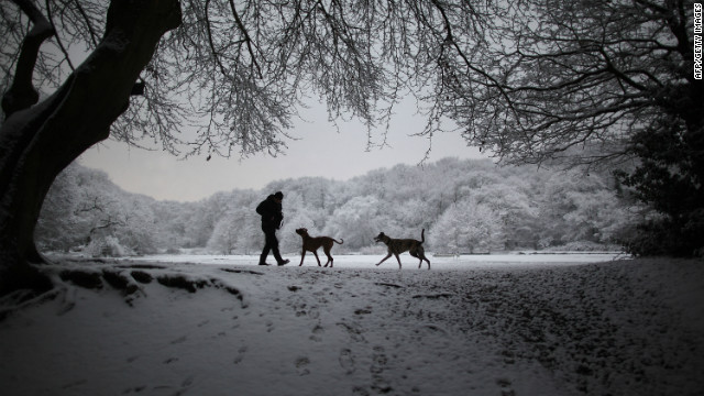 A man walks with his dogs next to Queen's Mere pond in the snow on Wimbledon common on February 10, 2012 in London, England. The Met Office cold weather alert remains at Level 3 as southern parts of England continue to suffer from cold weather and freezing conditions, with further snowfall overnight.