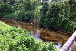 El derrame en Monagas amenaza el ecosistema