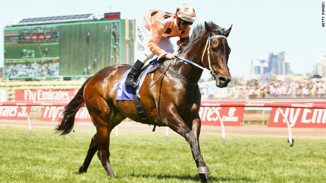 Five-year-old mare Black Caviar has been on a sensational unbeaten run, winning all 18 of her races.