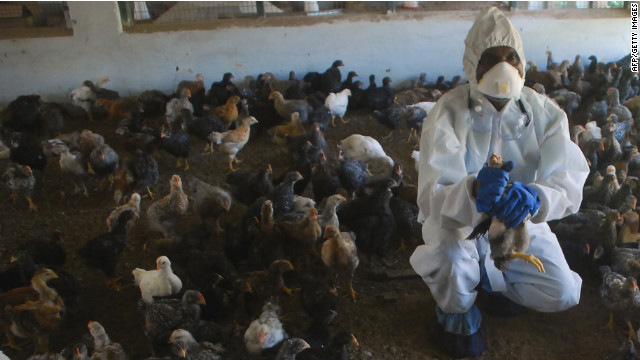 WHO: Bird flu data still on hold