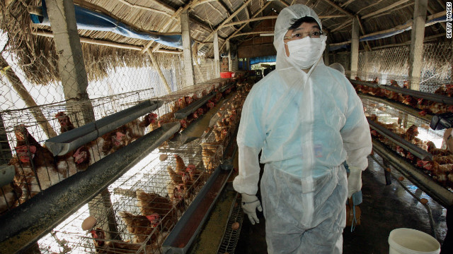 Study: Bird flu death rate may be overblown