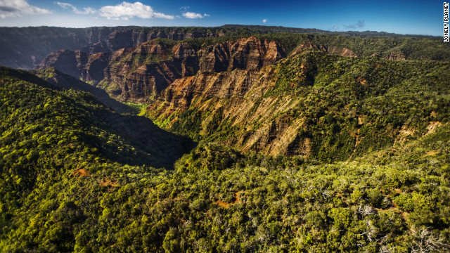 Waimea Canyon State is one of the island's greatest natural wonders with lush green forests that blanket its top.