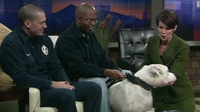 TV anchor gives interview after on-air dog bite