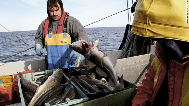 With cod fishing slashed, a way of life may slip away