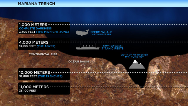 Inside the Mariana Trench