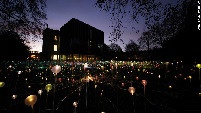 Bruce Munro's striking light gardens are glowing landscapes of low-energy LED lights and fiber optics that sparkle in the night. &quot;Creatiing these pieces allows me to (hopefully) communicate some of my thoughts and feelings about the importance of cherishing the environment,&quot; he says. 