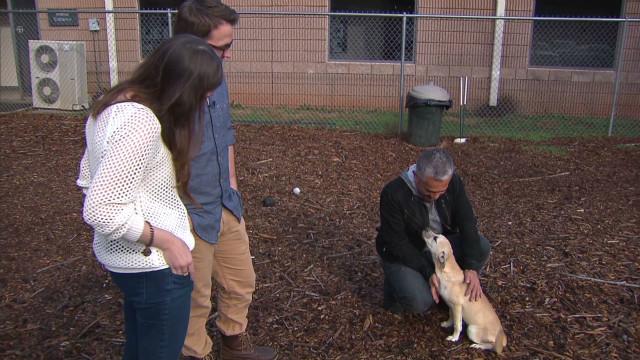 """El """"Dog Whisperer"""" Cesar Millán da consejos para adoptar un perro y ser feliz con él"""