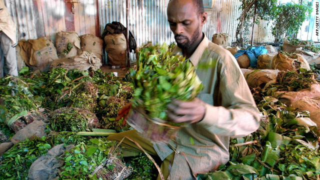 <br/>The East African plant khat (Catha edulis) has been popular for centuries in the Horn of Africa and parts of the Middle East.
