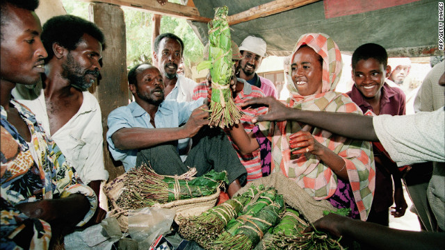 Khat is central to cultural and social activities for many communities in East Africa and parts of the Middle East.