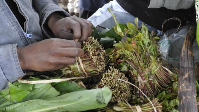 The Dutch government announced in January a ban on all imports of khat -- the mild narcotic is already illegal in the U.S. and most European countries.