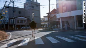 Inside Fukushima's eerie, empty towns
