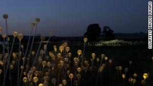 \'Field of Light\' encourages onlookers to cherish the landscape says British lighting designer Bruce Munro