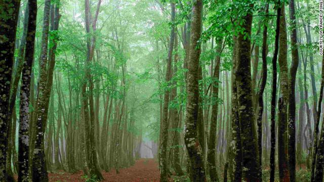http://i2.cdn.turner.com/cnn/dam/assets/120310095318-fukushima-going-home-tong-horizontal-gallery.jpg