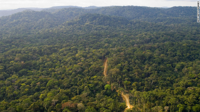 About 80 per cent of Gabon is covered by forests, sheltering a rich variery of wildlife. The west African country recently branded itself &quot;Green Gabon&quot; as part of plans to create the so-called &quot;green oil&quot; that the country's ecosystem provides.