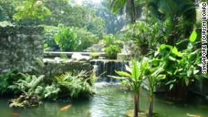 Singapore\'s Botanic Gardens
