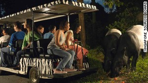 Singapore Zoo\'s Night Safari