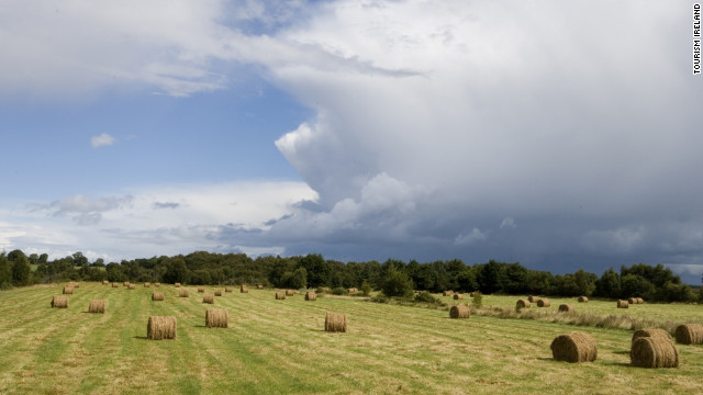 A rural scene of the countryside near Saints Island, County Longford