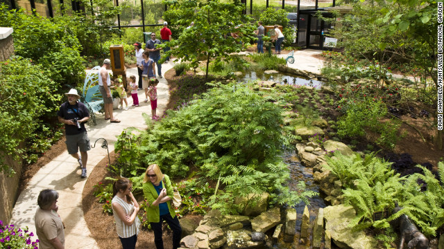 The Huntsville Botanical Garden's Nature Center is home to thousands of creatures including native butterflies, frogs and turtles.