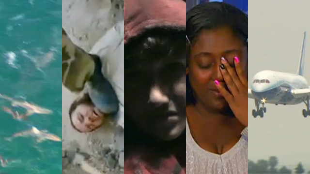 This Week's Top Videos