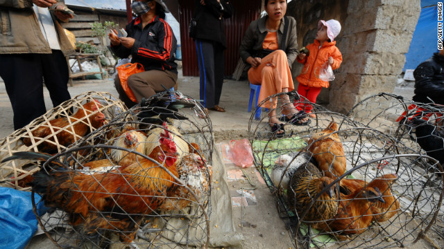 Bird flu research resumes - but not in U.S.