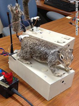 Scientists have created &quot;robosquirrel&quot; in a bid to better understand the interaction between real squirrels and their main predator, rattlesnakes. 