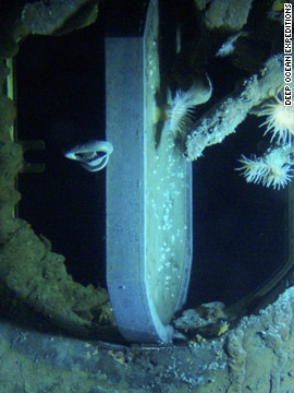 Underwater marine life grows upon an open porthole of the Titanic.